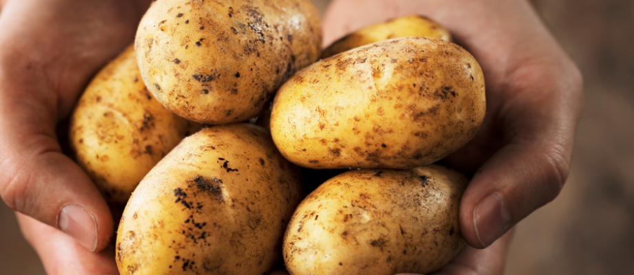 Amazing Beauty Recipes with Potatoes to Try